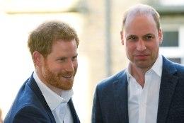 IKKA TÜLIS? Vennad William ja Harry kõnnivad matuserongkäigus lahus