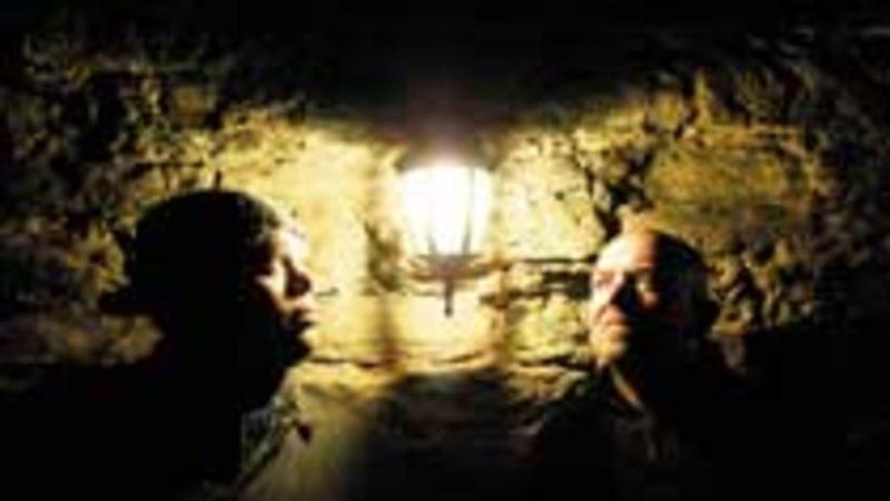 Bonzo, Tõun ja põhjuseta armunud inglid albumil «Andke tagasi maa»