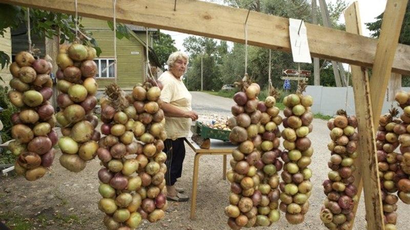 Peipsiääre sibulamüüja Aleksandra: ei tasu enam ära, odavam on naabri käest osta