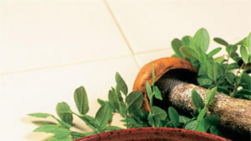 Panniroog põdraliha ja seentega
