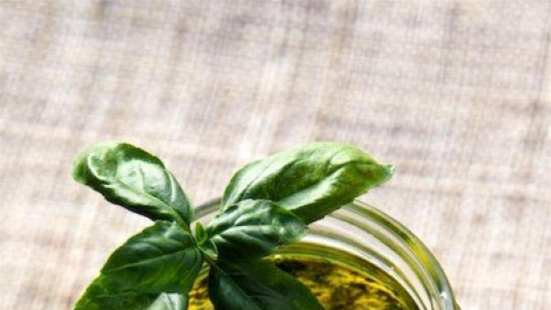 Pesto alla genovese ehk Liguuria pesto