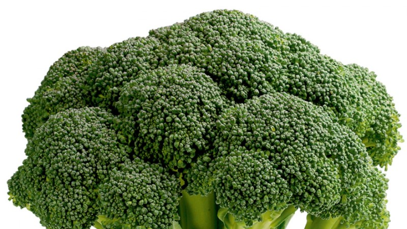 Proovi brokolit