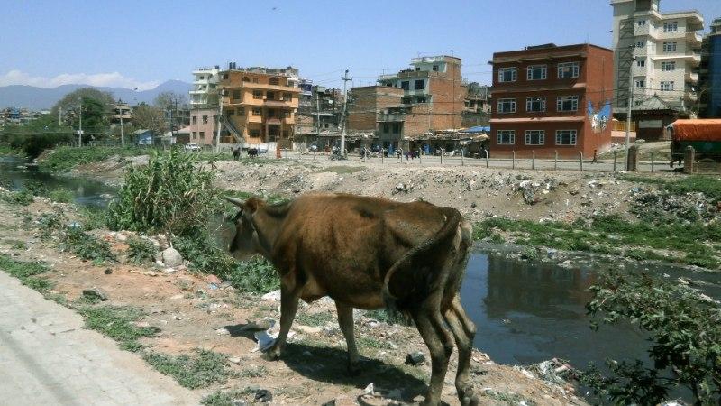 Nepaal – esimene negatiivne couchsurfingu kogemus