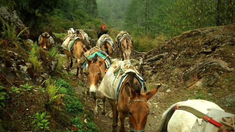 Indoneesia blogi: Nepaal (4. osa) - kuumavee allikas viis valu