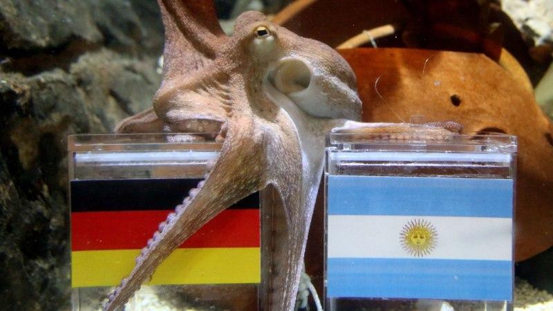 JALGPALLISTUUDIO: jäänud on vaid üks küsimus – Saksamaa või Argentiina?