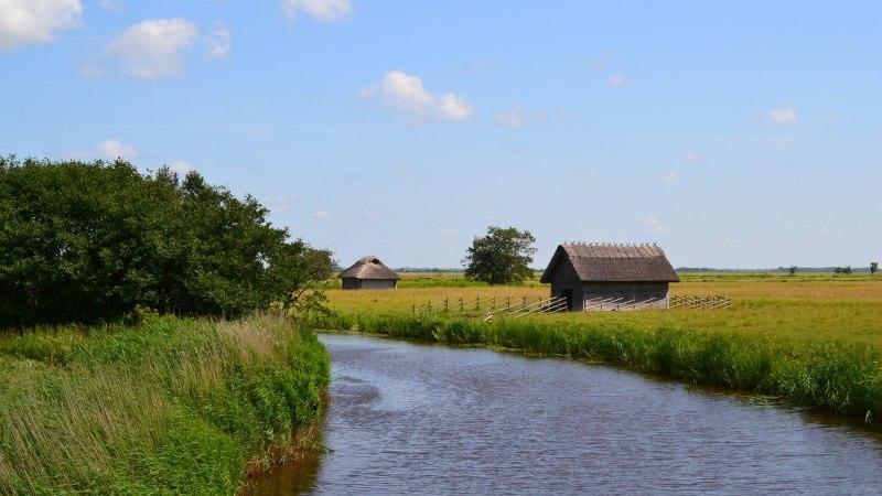 Avasta Eestimaad: Läänemaal laulavad nii rändlinnud kui rannaliivad