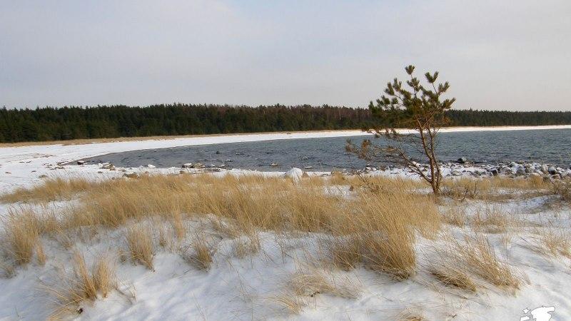 Avasta Eestimaad: millisesse randa tuleks minna talvel?