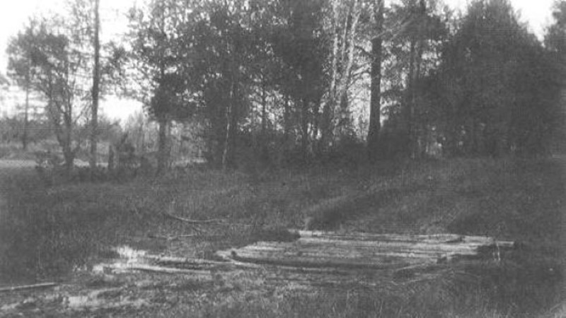 Nikolai II laste säilmete kinnituseks ekshumeeritakse Aleksander III