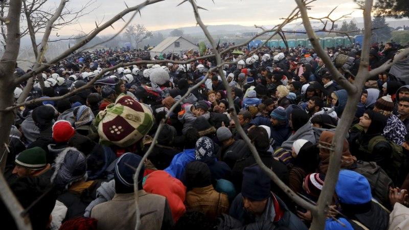 Tuuli Stewart | Kas Eestit ohustavad immigrandid?