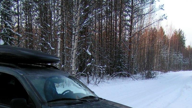 Avasta Eestimaad: pikk vastlaliug läbi metsade