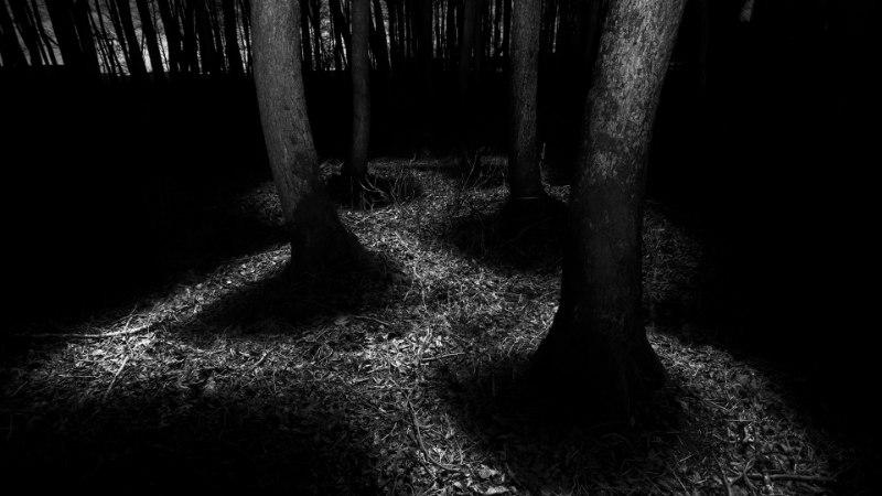 GALERII: Andrei Reinol võitis Sony ülemaailmse fotokonkursi Eesti rahvusliku auhinna