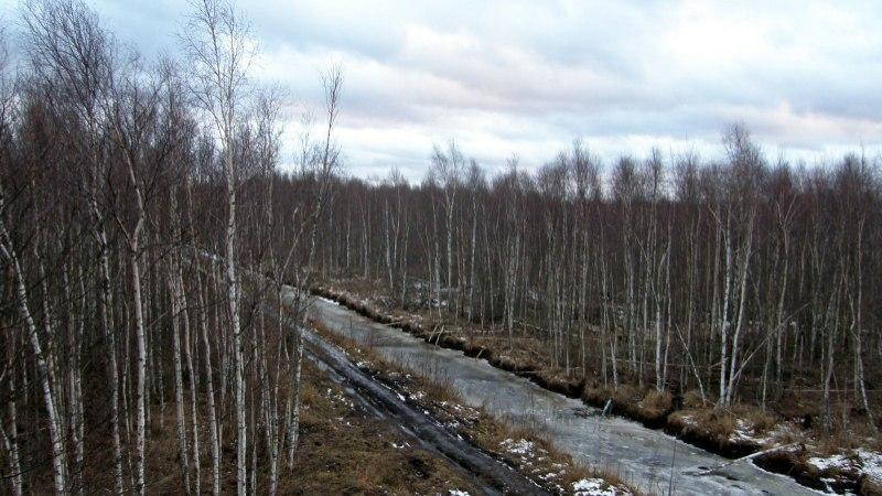 Avasta Eestimaad: kuidas Emajõe suursoos ägedalt matkata?