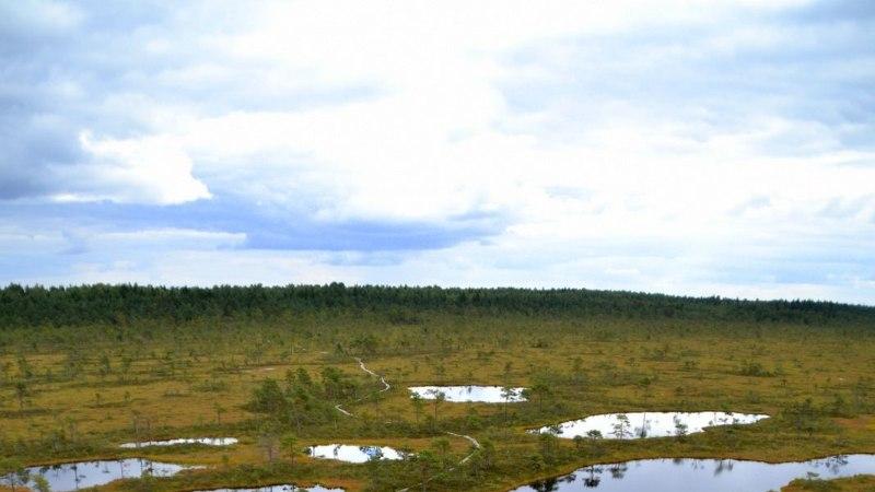 Avasta Eestimaad: millisesse salakohta nädalavahetusel matkama minna?