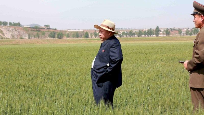 Põhja-Koread tabas suur põud ja ähvardab uus näljahäda