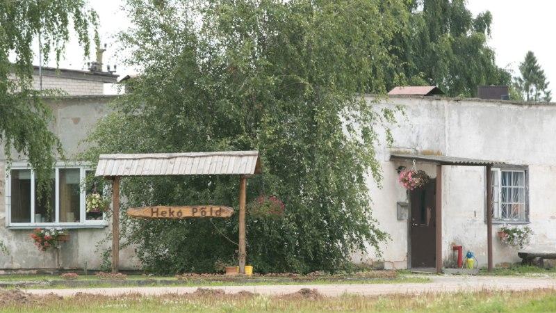 GALERII | Tartumaal jõudis seakatk suurfarmi, 1200 looma hukatakse
