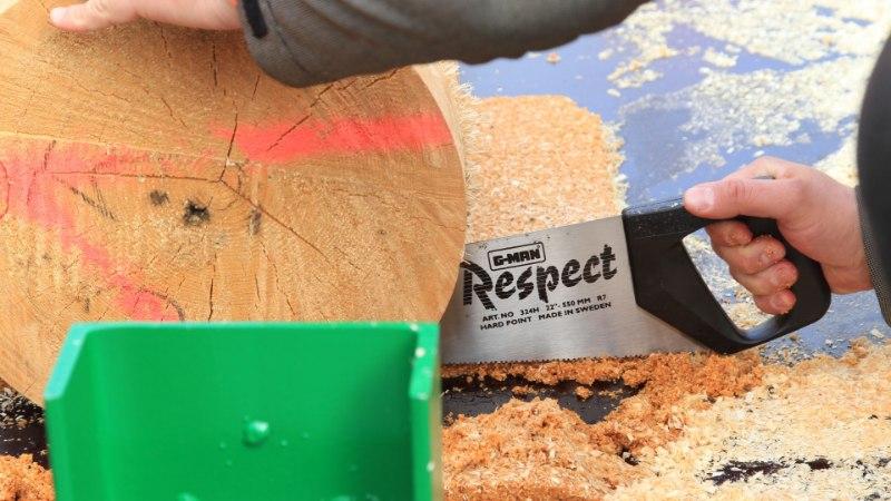 Mine kooli – õpi metsandust!