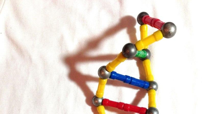 Tugeva tervise ja terava mõistuse tagavad samad geenid