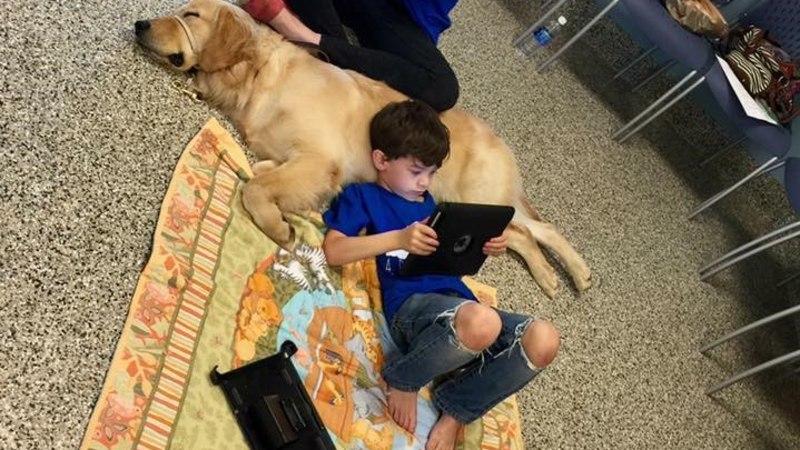 PILTUUDIS   Puudutusi mittetaluv autistlik poiss leidis imelise kontakti koeraga