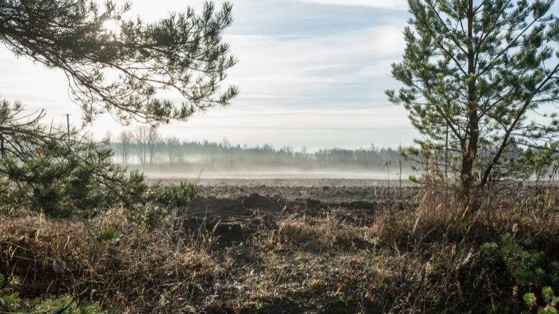 Kuuekümne miljoni euro eest keskkonnatoetusi