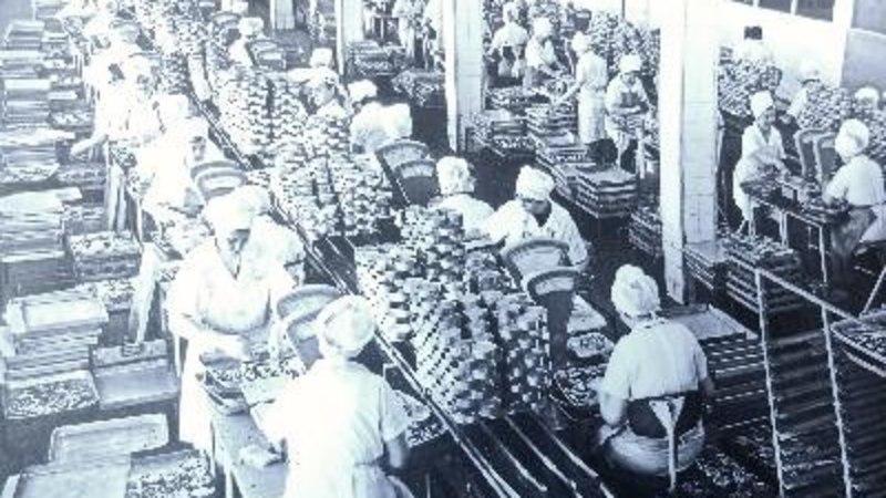 Наследие морской культуры: Колхоз имени Кирова – пример государства в государстве