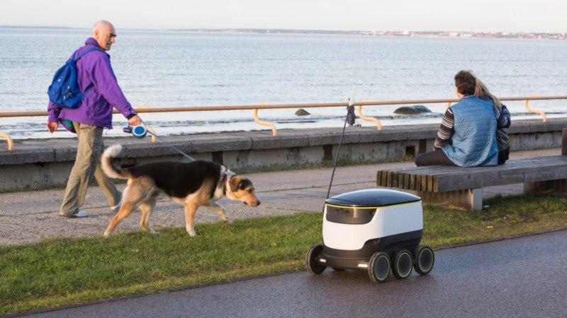 Piima ja pitsa toob teieni üks aeglaselt veerev Eesti robot