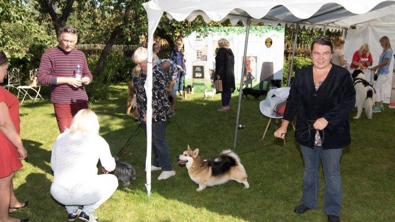 GALERII   Tartus avati koeraomanike rõõmuks Karlova koerte kohvik