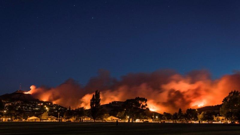 FOTOD | Ulatuslik metsapõleng Christchurchi linna all on hävitanud 11 maja