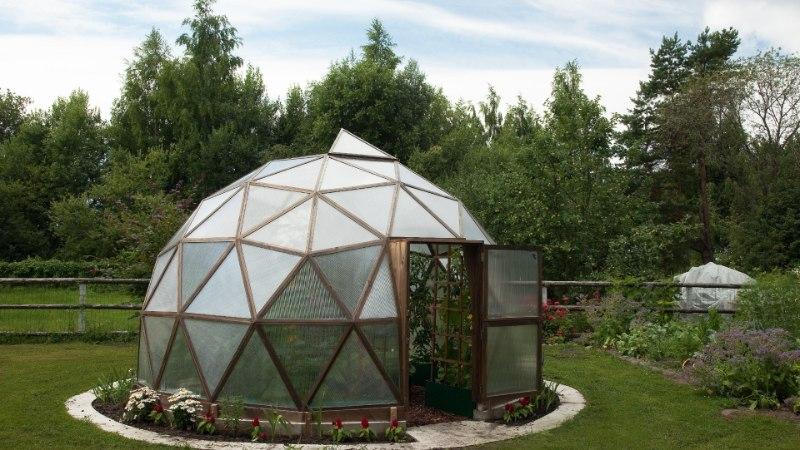 SÄRTSU SUVESSE | Kuplikujuline kasvuhoone ja taimekast teevad aia omanäoliseks!