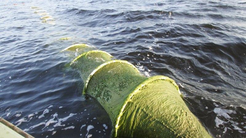 Prügi, võõrliigid, müra: riikidel on neli aastat aega päästmaks Läänemerd