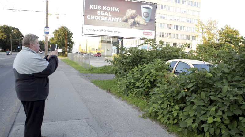 PAPARATSO   Absurditeater! Kellele on mõeldud rohelised parkimiskohad?