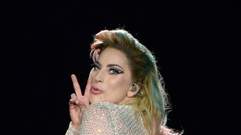 Lady Gaga kukk ajab naabrid hulluks