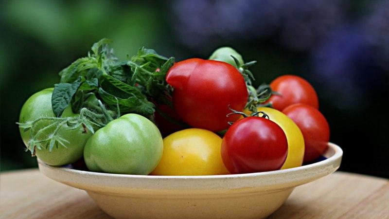 NIPID   Kuidas saada poolvalminud tomatid punaseks?