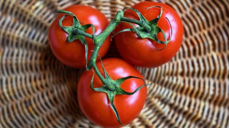 ANNA RIISTALE KÜTUST: kõige kasulikumad ja kahjulikumad toidud peenise tervisele