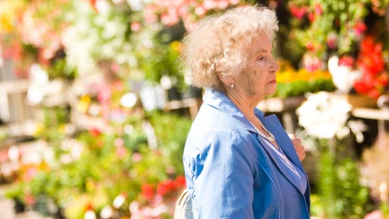 Vanemaealiste tööhõive on sajandi kõrgeim