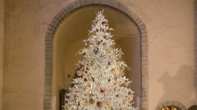Tallinna uhkeim jõulupuu