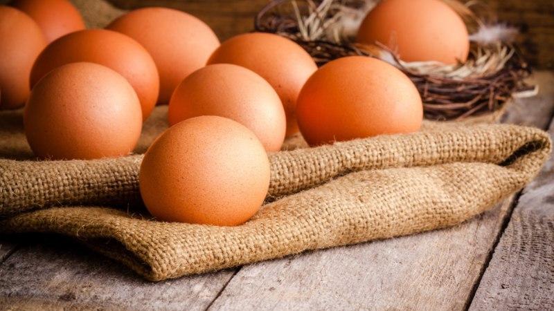 3 olulist põhjust, miks tarbijad eelistavad vabakanade mune
