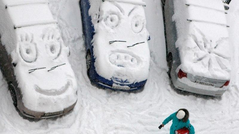 В Европе снежный покров с каждым десятилетием становится все тоньше