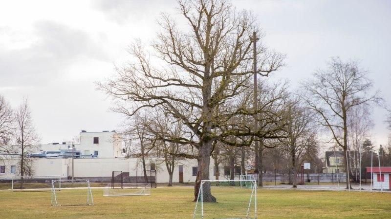 NAISTELEHT SOOVITAB: 48 tundi talvisel Saaremaal