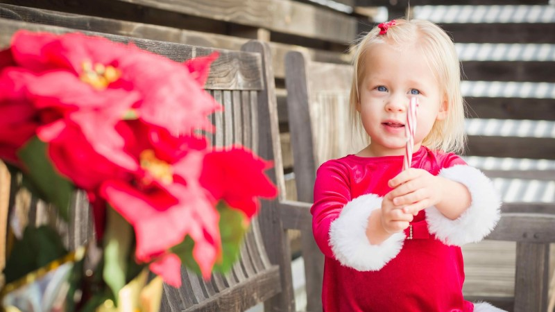 TERVISEAMET HOIATAB: jõulutähed ja kaunistused võivad olla väikestele lastele ohtlikud