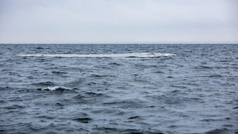 GALERII   Miinituukrid lõhkasid Naissaare lähistel seitse mürsku