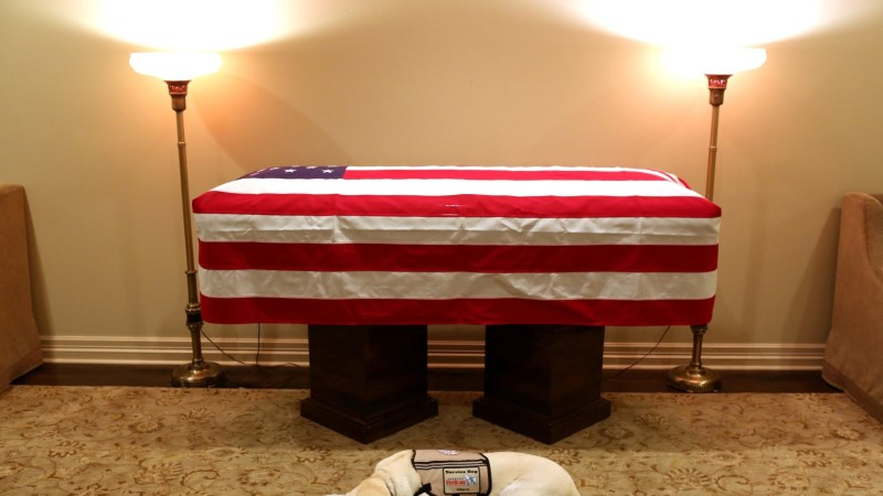 Фото пса Джорджа Буша, который не отходит от его гроба, разбило сердца миллионам