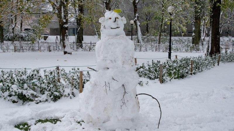 Kalamajas tehakse protesti märgiks lumememmesid