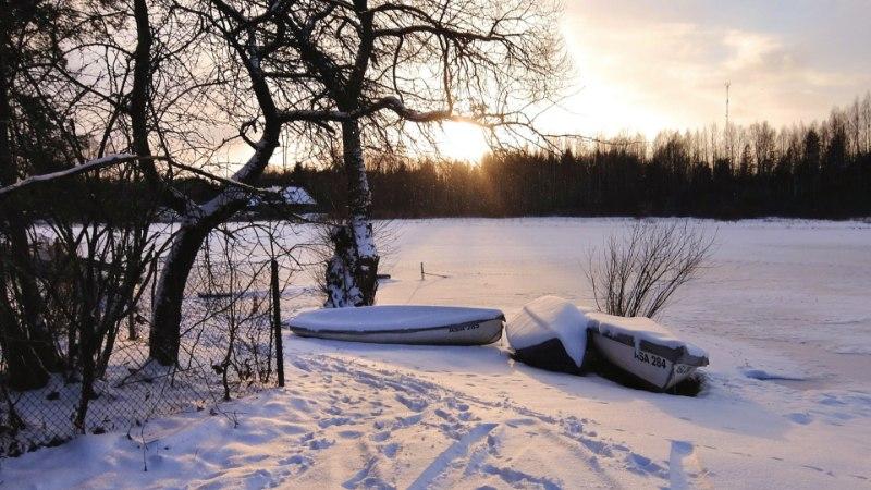 METSAVANA ENNUSTAB: küünlapäeva lõunakaare tuul tähendab seda, et märtsi lõpus on ilm veel talvine