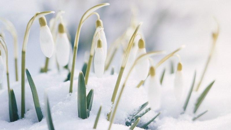 20 марта: что можно делать, а что нельзя в день весеннего равноденствия