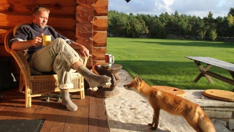 VANA KULD |  Jaan Tätte: elan keskmise pensionäri tasemel ja saan hakkama