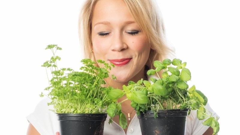 Viis toitu, mida oma tervise nimel kevadel ilmtingimata sööma pead
