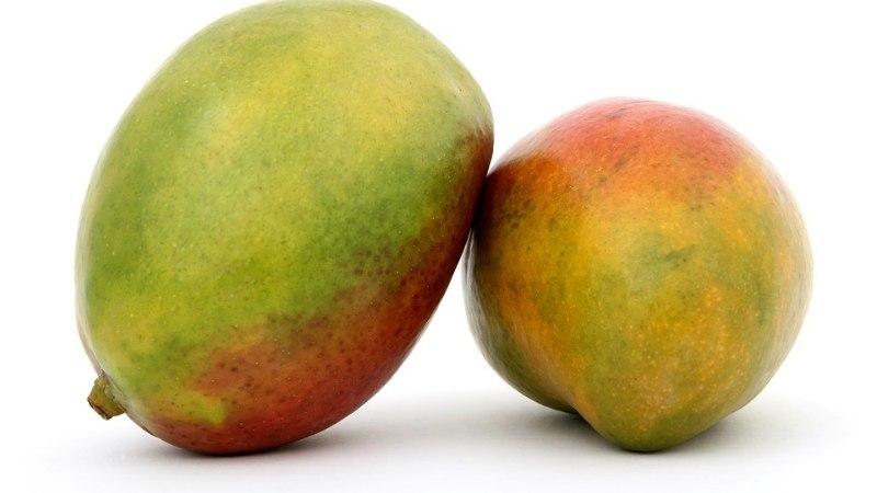 Ohoo! Kolm head põhjust, miks peaksid sööma mangot
