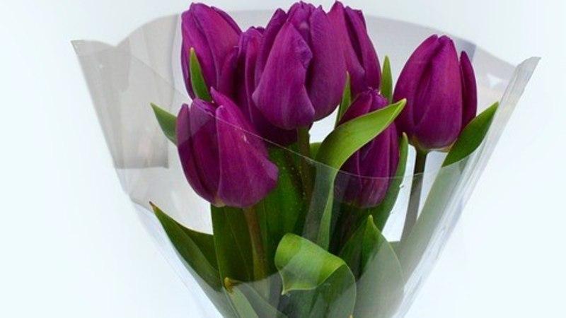 Kasuta neid nippe, et naistepäeval saadud lõikelilled kauem ilusad püsiksid!