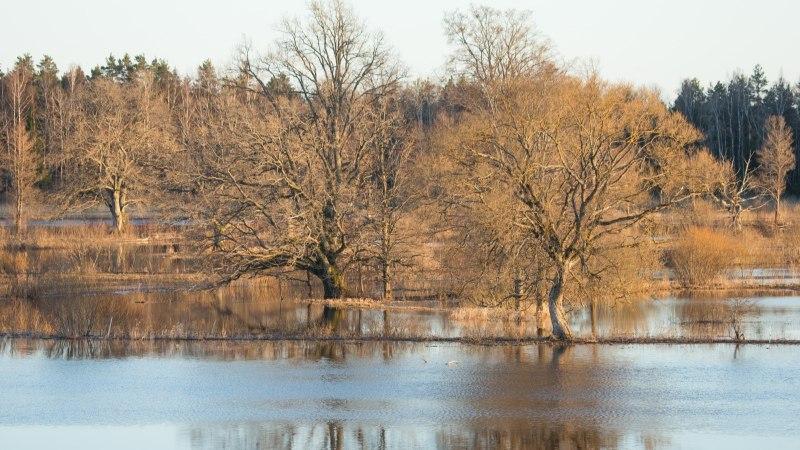 IMEILUS GALERII   Viimane aeg on Soomaa üleujutust vaatama minna!
