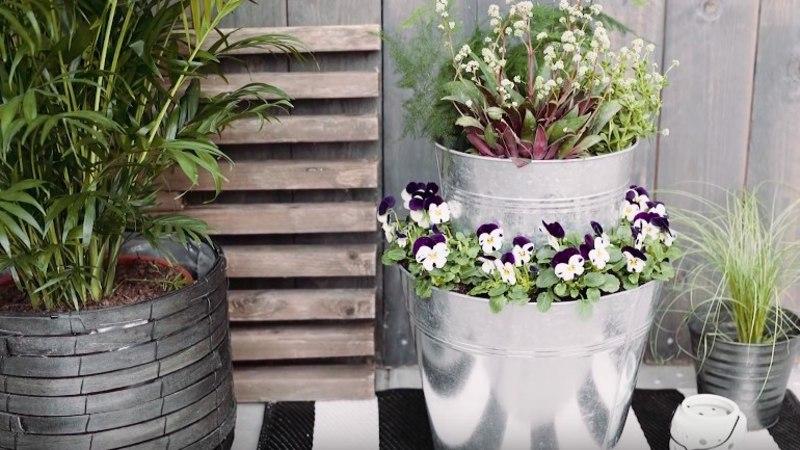 Vau, kui lahe idee! VIDEO: põnev lilleseade terassile